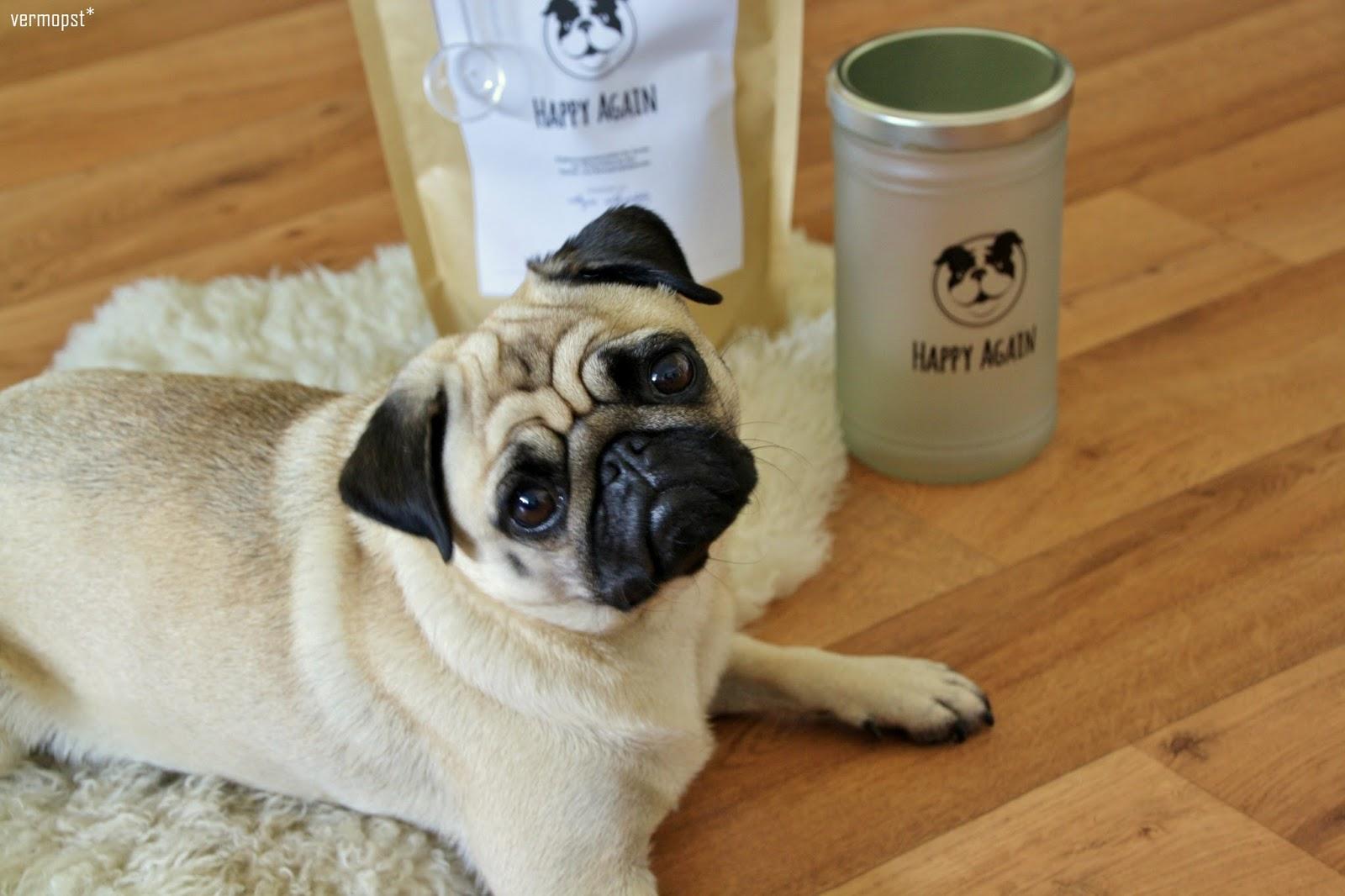 Happy Again - ein zertifiziertes Ergänzungsfuttermittel für Hunde